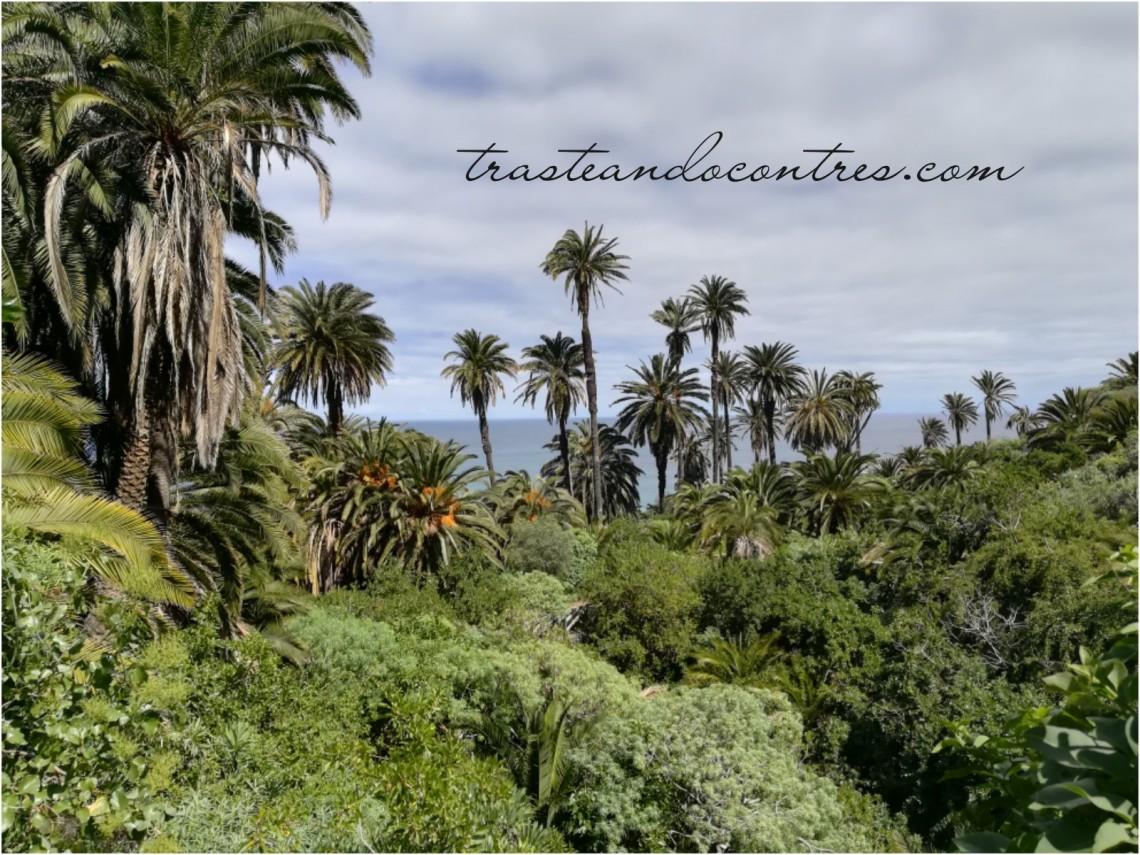 Paisaje protegido Tenerife